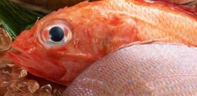 Какую рыбу лучше выбирать: размороженную или охлажденную?